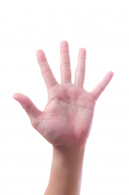 five 5 main doigts tungphoto