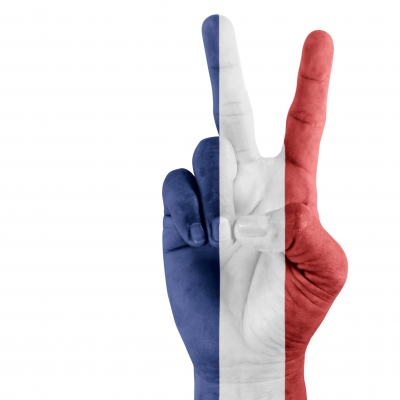 drapeau francais main domdeen
