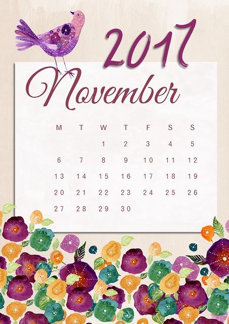 Calendrier du mois de novembre 2017.