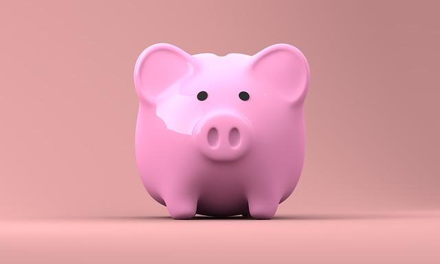 Photographie d'une tirelire en forme de cochon.