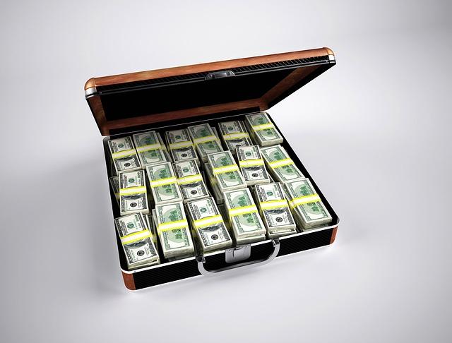 Malette remplie d'argent