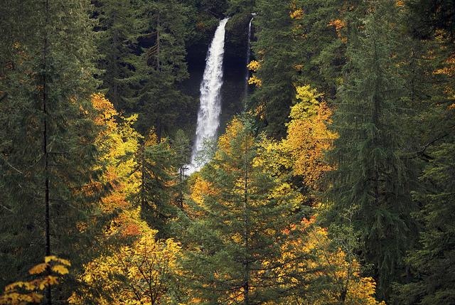 Un paysage d'automne.